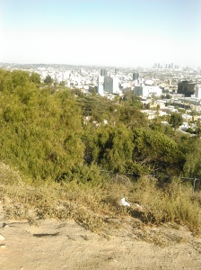 Runyon City View